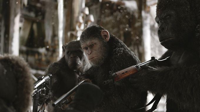 """""""Planet der Affen"""" im Kino: Der Kampf Schimpanse gegen Mensch geht in die letzte Runde"""