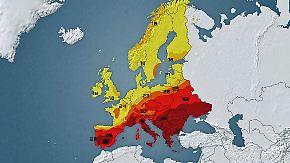 46 Grad, Waldbrände, Schlamm: Südosteuropa kämpft mit extremer Hitze