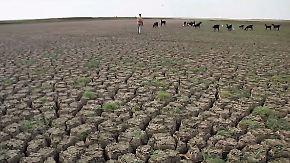 Studie zu Klimafolgen: Hitze könnte in Europa bald Zehntausende das Leben kosten