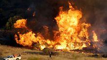 Extreme Hitze in Griechenland: Zivilschutz verbietet jegliches Feuer