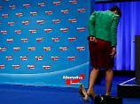Aufhebung der Immunität: Naht Frauke Petrys politisches Ende?