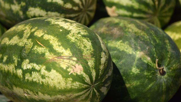 Welche Melone sieht am besten aus? Schon vor dem Klopfen sollte man eine Vorauswahl treffen.