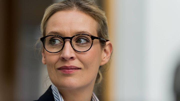 Nimbus der gemäßigten Wirtschaftsliberalen: Alice Weidel