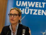 Vorwurf der Schwarzarbeit: Zeitung legt im Streit mit Weidel nach