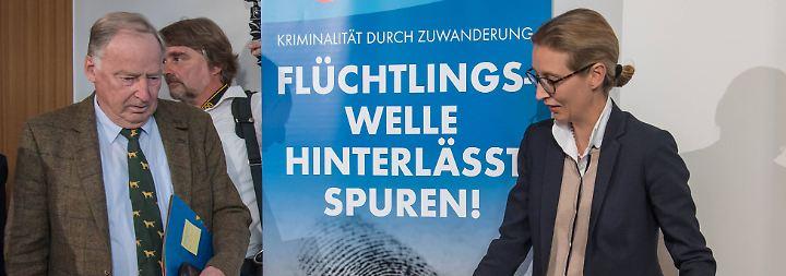 Enges Rennen um Platz drei: AfD startet Schlussspurt im Bundestagswahlkampf