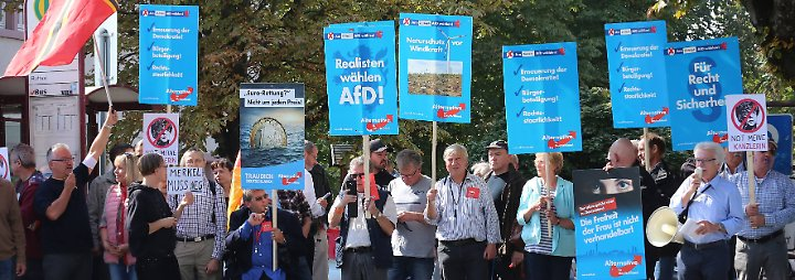 Rennen um Platz drei: AfD könnte dubiose Kandidaten in den Bundestag bringen
