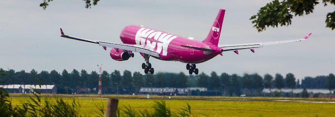 Schnäppchen oder Reinfall?: Darauf muss man bei Billigflügen achten