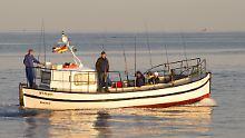 Geführte Angeltouren an Ostsee: Jetzt ist Hoch-Zeit auf dem Wasser