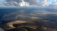Resümee nach 20 Jahren: Der Wattenmeerplan schützt das Ökosystem