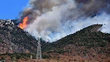 140.000 Hektar Wald vernichtet: Brände wüten in Norditalien
