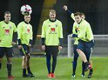 Schweden kämpft ums WM-Ticket: Zlatans Erben wollen italienische Apokalypse