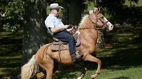 Moore mit Pferd ...