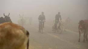 Dunstwolke aus dem All zu erkennen: Neu Delhi erstickt im Smog