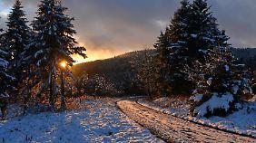 Winterlandschaft in Oberhof: Im Thüringer Wald fielen bis zu zehn Zentimeter Schnee.