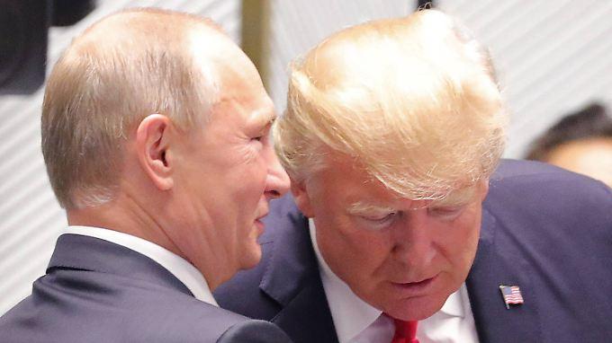 Putin und Trump am 11. November bei APEC-Gipfel in Vietnam.