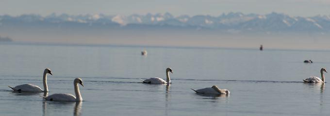 Frau Holle im Anmarsch: Polarluft treibt den Winter ins Land