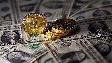 Superreich durch Krypto-Geld: Diese Menschen sind Bitcoin-Millionäre