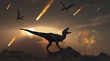 """""""Jurassic World"""" kehrt zurück: Dieses Mal sterben die Dinos"""