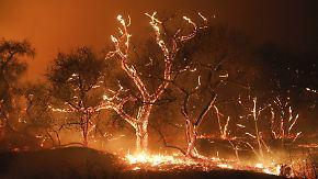 Kalifornien in Flammen: Starker Wind facht Waldbrände weiter an