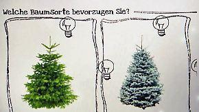 Tanne 2.0: Immer mehr Deutsche bestellen Weihnachtsbäume online