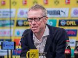 """Der """"kölsche Arsène Wenger""""? Peter Stöger."""