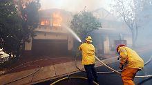 Kochfeuer zerstörte Promi-Villen: Obdachlose lösten Brand in Bel Air aus