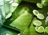 Der Bitcoinkurs ist seit Jahresbeginn um fast 2000 Prozent gestiegen.