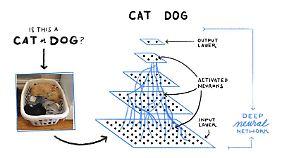 """Mehrere Schichten """"filtern"""" Bildinformationen, bis die KI sagen kann, ob das Foto eine Katze oder einen Hund zeigt."""