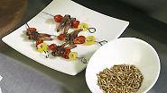 n-tv Ratgeber: Maden, Grillen und Co. erobern den deutschen Speiseplan