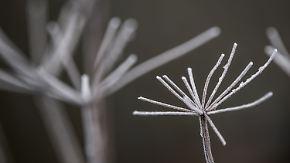 Vielerorts Glättegefahr: In der Nacht rollt eine neue Schneefront an