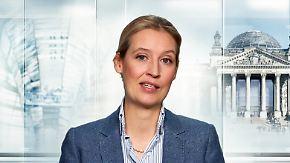 """Alice Weidel im Interview: """"GroKo-Parteien haben die Mehrheit verloren"""""""
