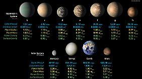 Die Nasa-Illustration zeigt die berechneten Werte des Trappist-1-System im Vergleich zu den Planeten unseres Sonnensystems.