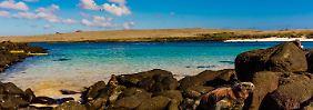 Strengere Vorgaben für Urlauber: Neue Schutzmaßnahmen für Galapagos