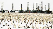 Comeback der Fracker: Zweites US-Ölwunder bringt Opec in Nöte