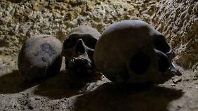 Totenschädel wurden auch gefunden.