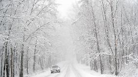Massiver Schneefall ließ malerische Landschaften entstehen.