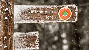 Winterlichster Tag der Woche: Sonne nimmt Kampf gegen Schnee auf