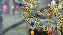 Holpriger Start in den Frühling: Ostereiersuche wird frostig und nass