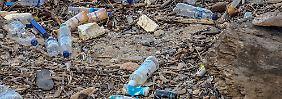 Versehentlich entdeckt: Neues Enzym zersetzt Plastikmüll