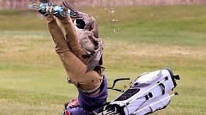 Kaum zu glauben, aber wahr: Gans greift Golfer an
