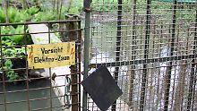 Das Gartengrundstück das 65-Jährigen ist mehrfach vor unliebsamen Besuchern geschützt.