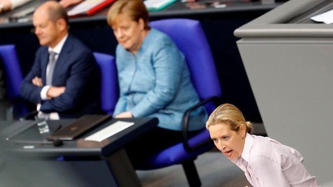 Wutrede lässt Merkel kalt: Schäuble ruft Weidel  zur Ordnung