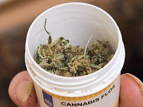 Ein Patient in Niedersachsen mit einer Dose mit Cannabis.