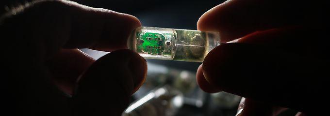 Vereinfachte Untersuchung: Schluckbarer Sensor findet Magenprobleme