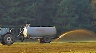 Mit Nitrat belastetes Grundwasser: Europäischer Gerichtshof verurteilt Deutschland