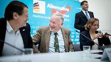 Parteitag in Augsburg: Die AfD versucht's mit Harmonie