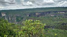 Weltweit einmalig: Kolumbien schafft riesigen Nationalpark