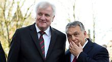 Streitthema Flüchtlingspolitik: Zeitung: Orban besucht Seehofer vor Merkel