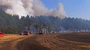 Wald in Flammen: Explodierende Munitionslager erschweren Löscharbeiten