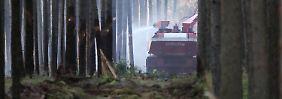 Reaktion auf extreme Brandgefahr: FDP will Wälder für Bürger sperren